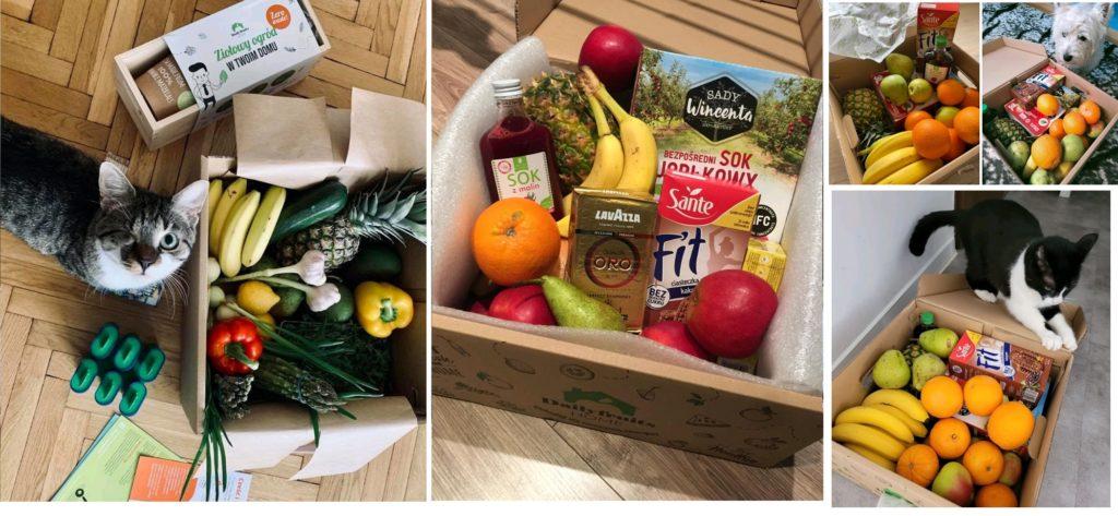 paczki dla pracowników zdalnych dailyfruits